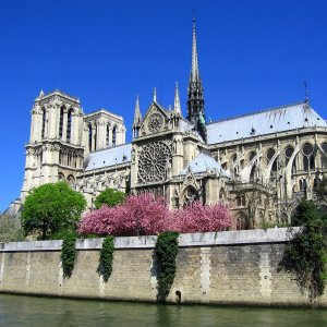 Notre Dame de Paris Cathedral - Erasmus of Paris
