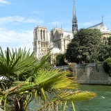 Seine Riverside - Notre Dame - Erasmus of Paris